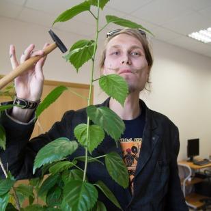 Художник и мастер перформанса Восьмён Диванов развешивает свои творения